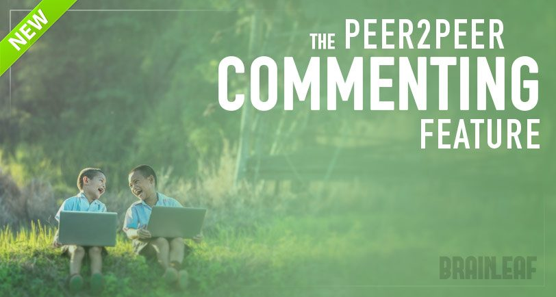 Peer to peer commenting feature